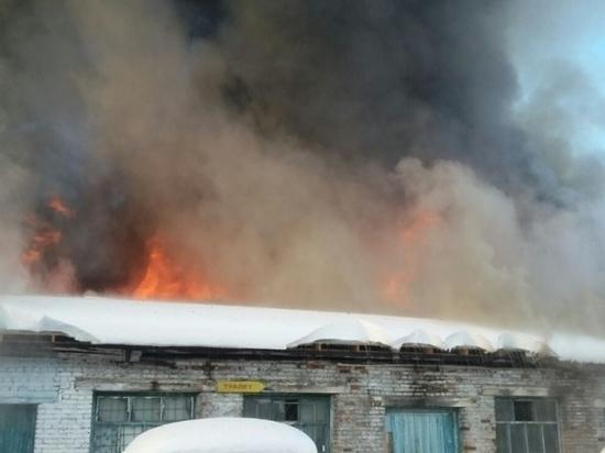 В Усть-Куте загорелся гараж с грузовой техникой, принадлежащий супруге правозащитника