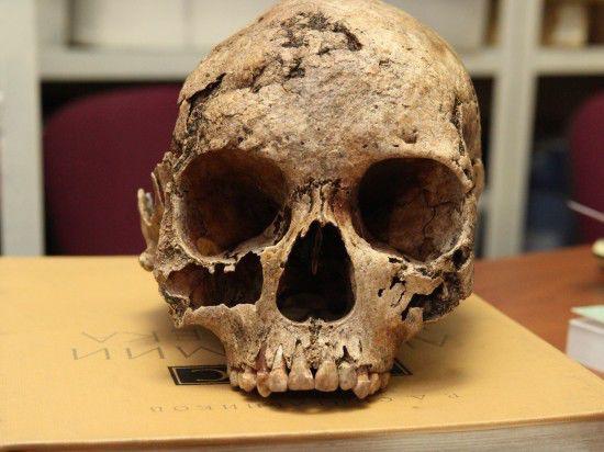 привитимье коренные народы эвенки айны юкагиры восточная сибирь иргту музей антропологии мгу евгений инешин денис пежемский