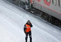 Многодетная мать, которую вместе с младенцем насмерть сбил поезд в Подмосковье, пыталась срезать путь
